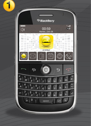blackberry02_04